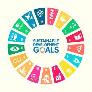 circle 17 sustainable development goals  streven sociale impact UN